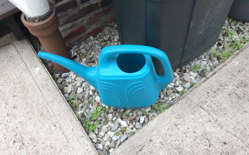 Photo: Upright watering can collecting water.